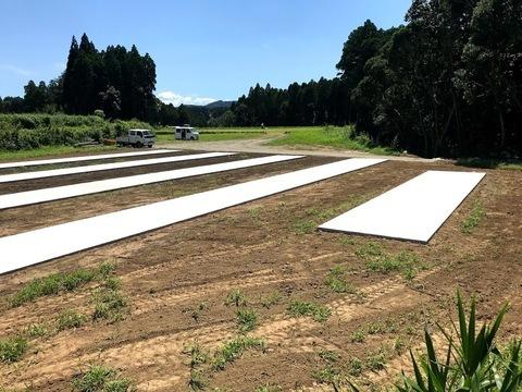 太陽光発電所 伊崎田地区6区画 基礎工事に入りました。 (有)アキ建設サムネイル