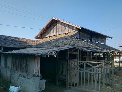 牛舎解体  大崎町中沖  H様邸    (有)アキ建設サムネイル