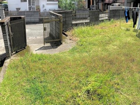 志布志市 Yさんの 家      草の生えた庭  何とかできませんか?サムネイル