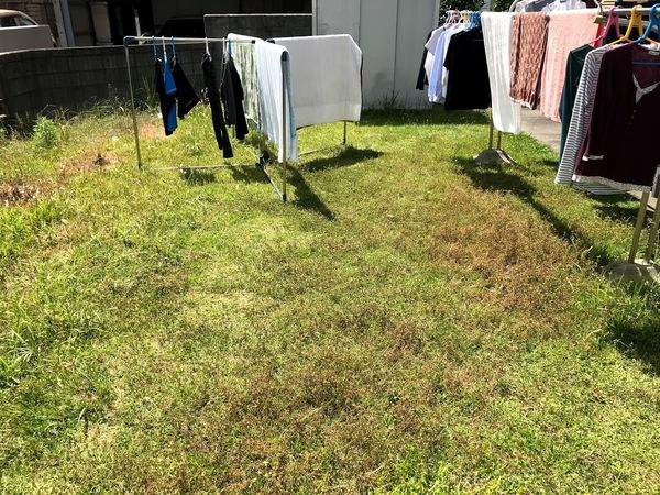 草の生えた庭 何とか出来ませんか!サムネイル